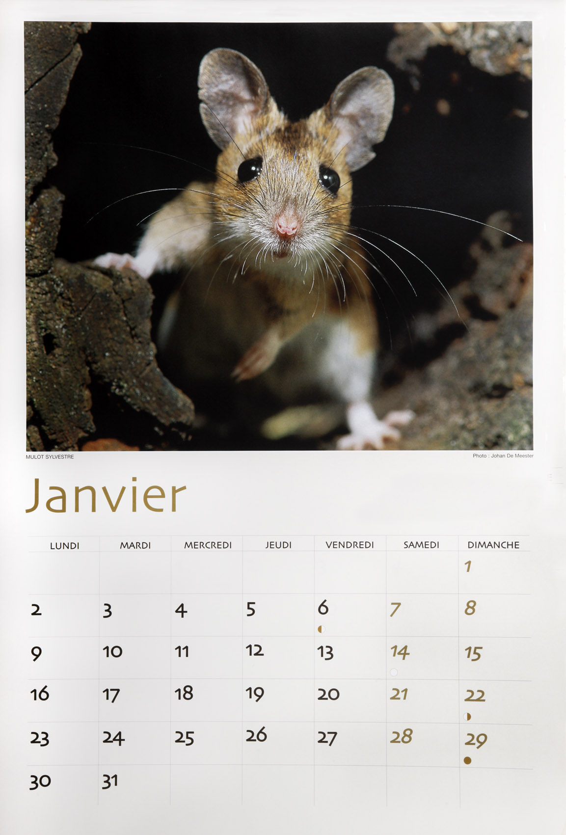 Calendar, ordered by a Belgian bank